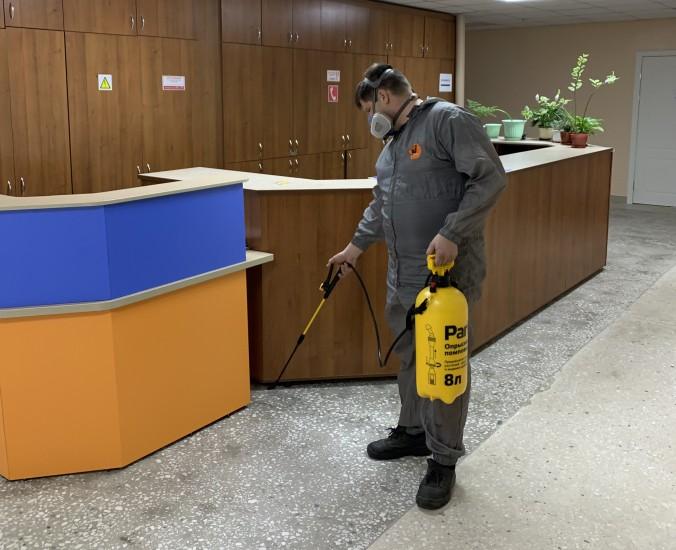 Борьба с муравьями недорого в г. Чебоксары - Эко Фон